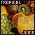 Juice: Tropical