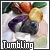Gemstone Tumbling