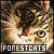 Cats: Norwegian Forest