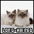 Cats: Longhaired